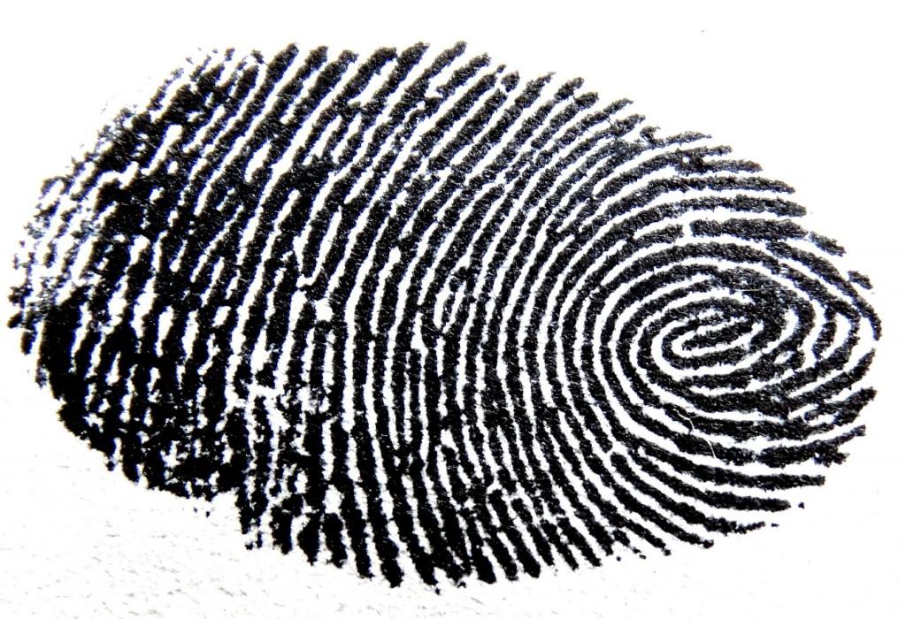 fingerprint-456483_1920